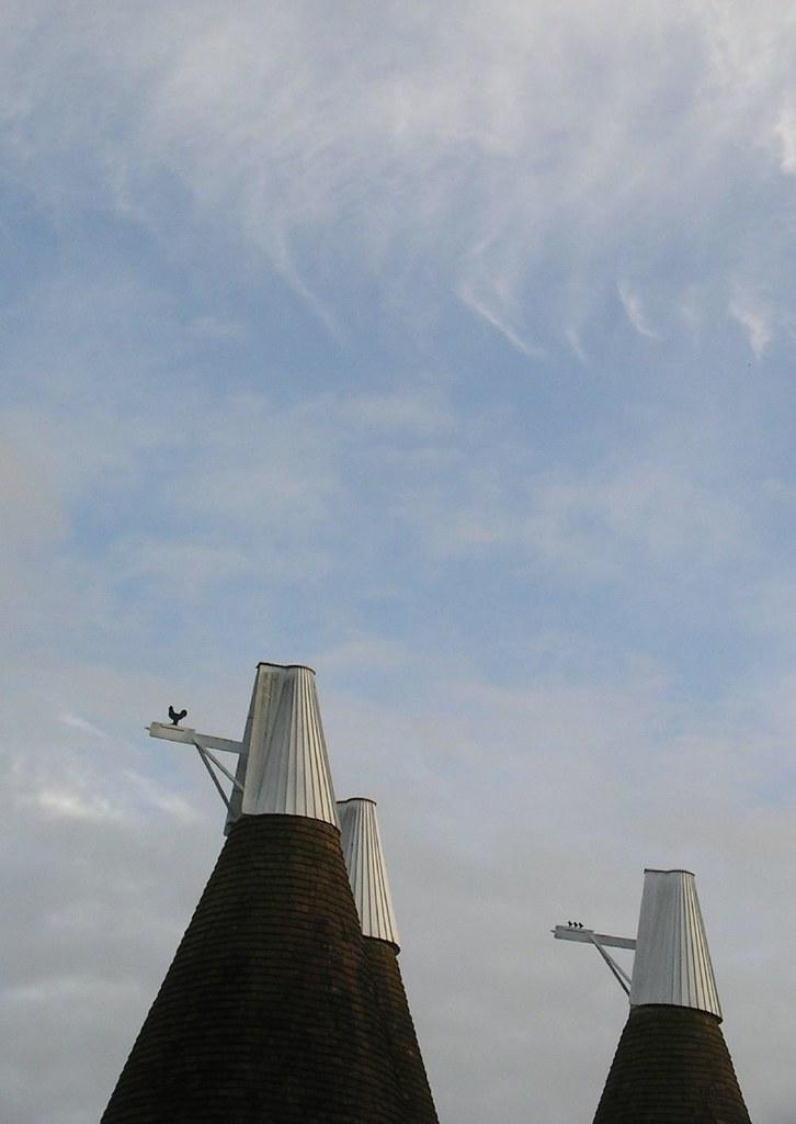 Book 2, Walk 20e, Stonegate to Robertsbridge Wind hen & chicks on oast house roofs, 27 October '07.