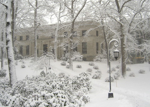 Wellesley College in a Snowstorm: Clapp Library | by librarygrrrl