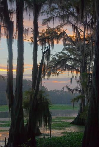 lake sunrise texas spanishmoss caddo dri hdr 3xp d80