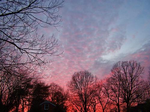 trees clouds dusk soe sunsetting naturesfinest westernsky mywinners abigfave anawesomeshot ultimateshot diamondclassphotographer betterthangood goldstaraward
