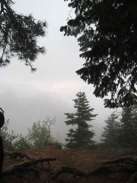 North Rim in the fog