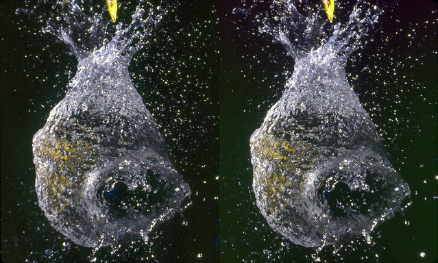 Water Balloon #3 (3D Cross-View)
