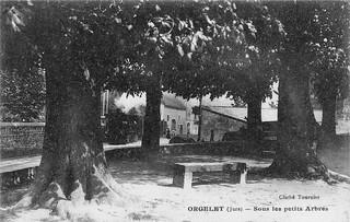 Orgelet - sous les petits arbres