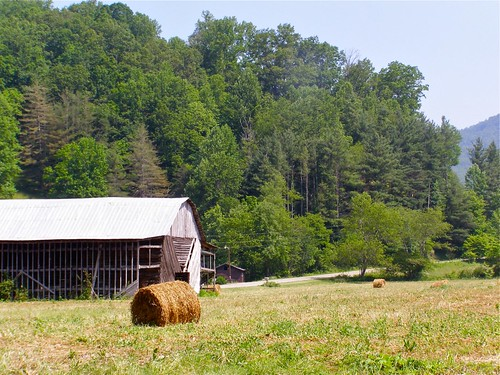 Hay-Making in the Age of Machinery
