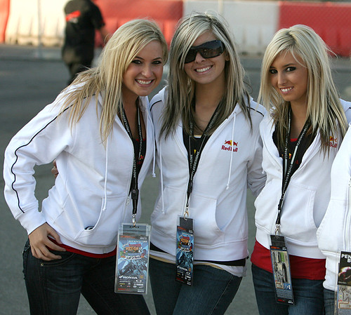 the girls of redbull