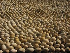Stone Texture   by Nirmal Kumar Chand