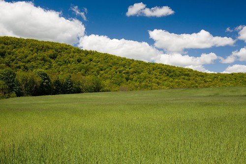 grass landscape raw tripod hay 2008 canonef2470mmf28lusm circularpolarizer lightroom steeprock canoneos5d macricostas