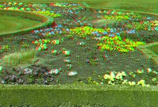 Tulip 3D | by www.guyk.fr