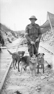 messenger dogs and handler near Villers-Bretonneux, 1918