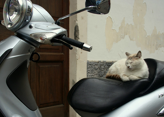 I don´t care about a ride now!