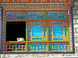 Tibet-6007 - Window Cat   by archer10 (Dennis)