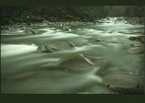 vancouver creek geotagged northvancouver magical soe lynncanyon lynncreek lynnvalley janusz leszczynski abigfave impressedbeauty superbmasterpiece excellentphotographerawards excapture goldstaraward geo:lon=123014667 geo:lat=49337777