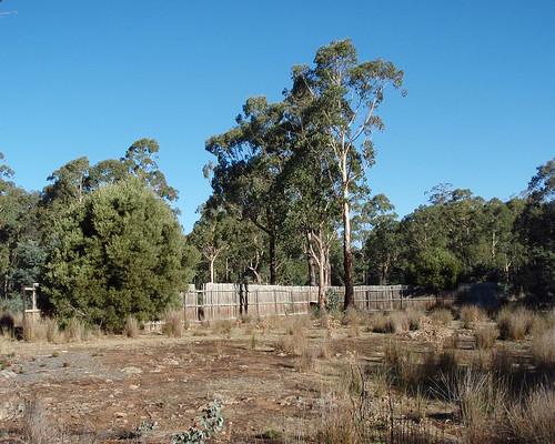 australia tasmania interlaken lakesorell geo:country=australia olympus790sw p3220034a geo:state=tasmania