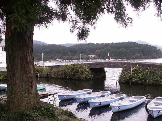 tiny harbor & bridge
