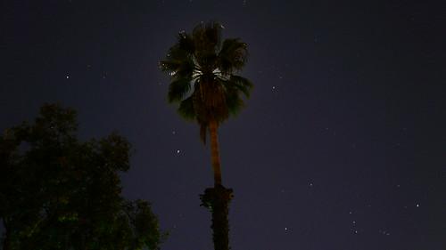 california camera longexposure sky moon stars evening cool palmtree poway settings