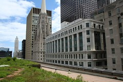 City Hall's green roof   by repowers