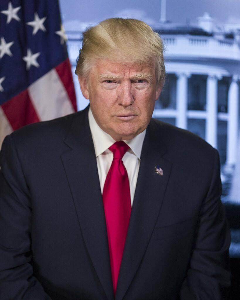 Image result for president donald j trump