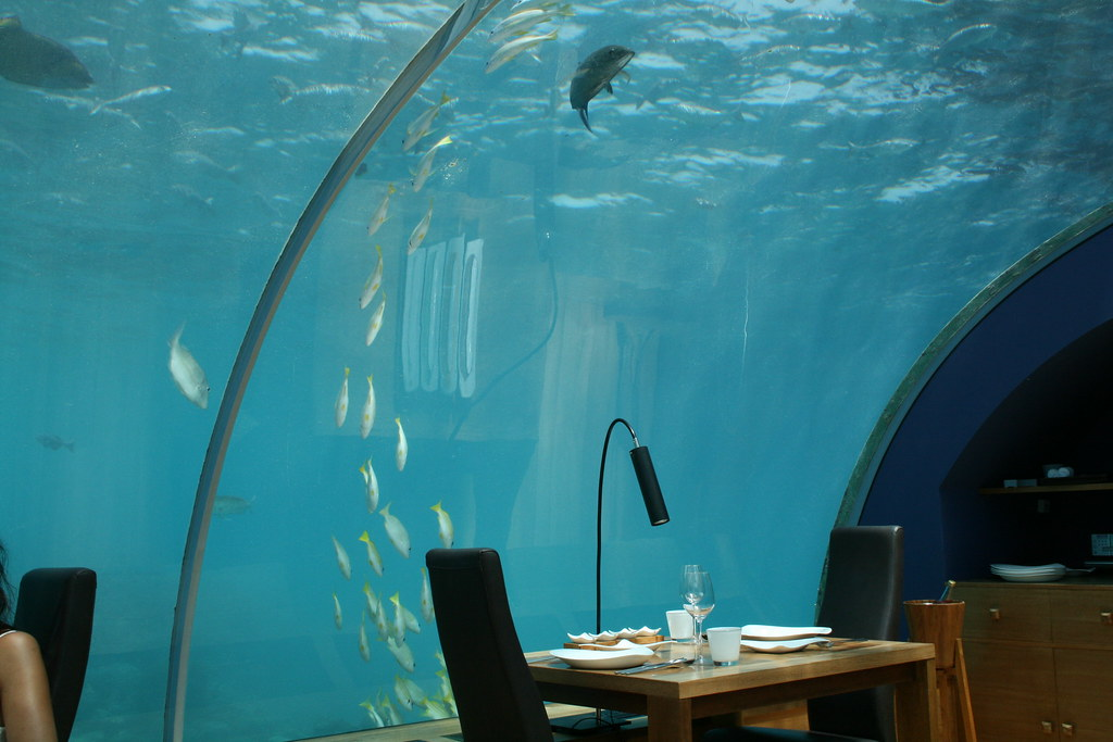 Dining at underwater restaurant