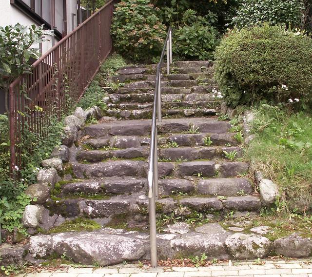 ancient steps / modern railing