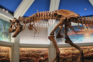 Disney - Dinosaur Skeleton | by Express Monorail