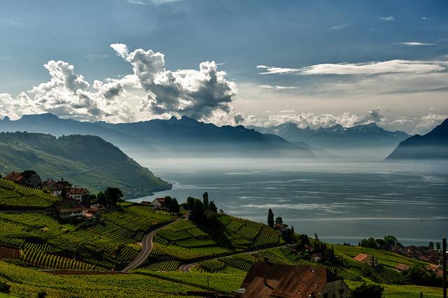 Lavaux - Le lac Léman et les Alpes / Geneva lake and the Alps