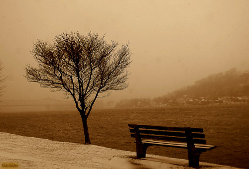 winter snow cold nature water sepia river landscape scenery quiet flood huntington digitalart windy dreary wv westvirginia computerart snowing highwater aw longing ohioriver allrightsreserved desolation photoshopart harrisriverfrontpark huntingtonwv quote1 rcvernors thechallengefactory