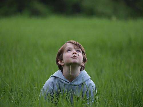 portrait blur field grass dof depthoffield adt westford zd olympus50200mm