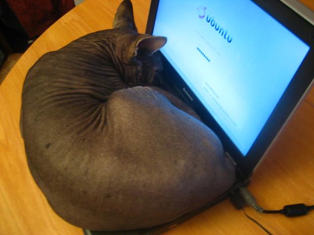 Uthello loves Ubuntu