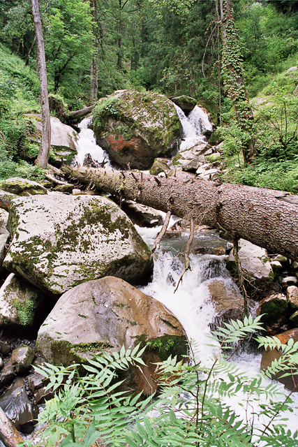 In Parvati Valley