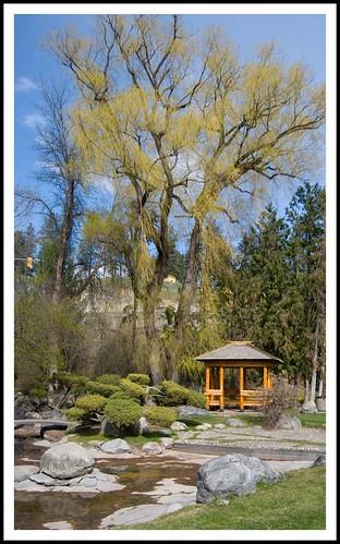park canada tree nikon bc view britishcolumbia gazebo willow vernon polson d40x
