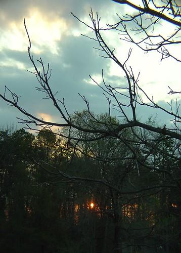 morning nature beautiful sunrise charlotte carolina suffletown