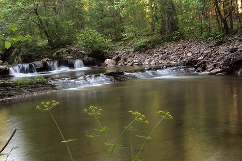 water creek virginia stream va slowshutter 2008 cascade 2405 0524 366 georgewashingtonnationalforest abigfave bathcountyva 3662008 052408 padscreek