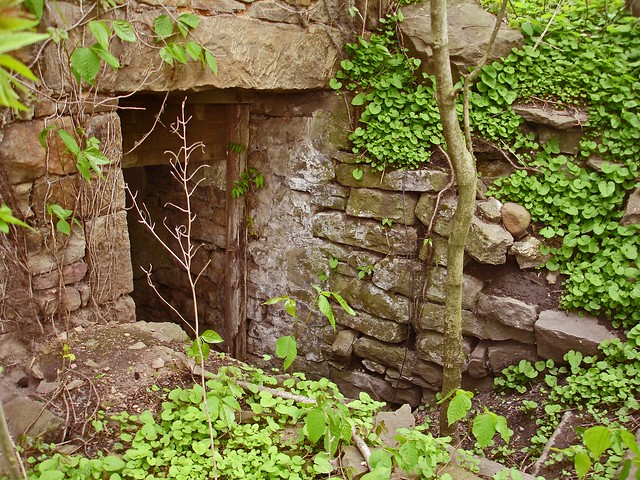 Springhouse basement entry