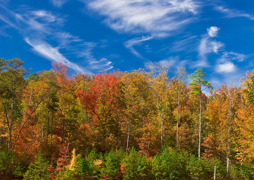 autumn trees nature clouds forest landscape colorful canon20d 123 canon1740mmf4l flickrexplore fallseason napg naturesgallery mywinners 72hourchallenge treesubject diamondclassphotographer flickrdiamond betterthangood canon1740f4lusmgroup naturepicsthatwowus