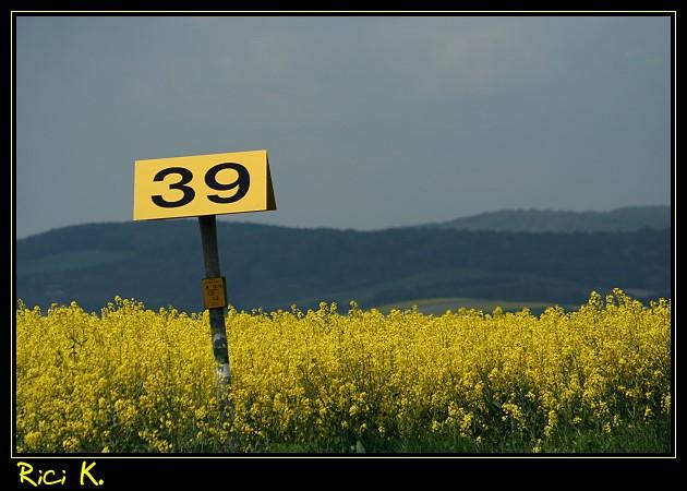 Nr.39