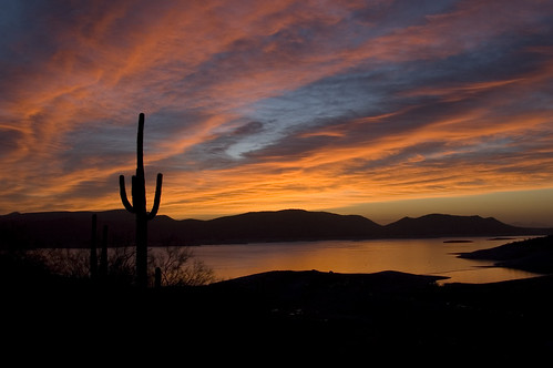 arizona cactus plants sun lake sunrise landscape dawn desert pleasant lakepleasant nikkor18200mm worldbest