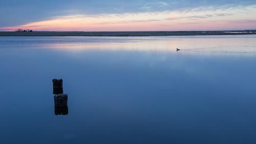 water sunrise river newjersey stream unitedstates nj 2014 bassriver tuckerton canon1635l canon6d bassrivertownship