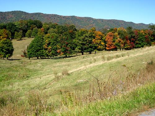 cycling virginia bluegrass hills bicycles foliage wv westvirginia va blueridgebyways