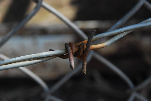 Barbed Wire | by LongitudeLatitude