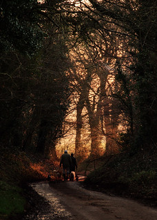 Walking the Dogs | by Arle Images