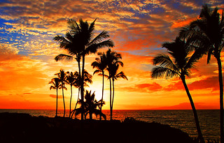 Tropical Sunset | by janruss