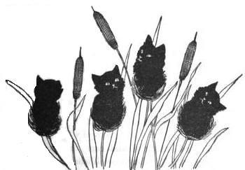 Fine Crop of Kitties | by LisaGenius