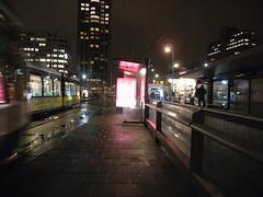 Rotterdam, January 2008