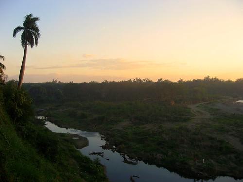cuba bayamo palmtree dusk river riobayamo landscape 0tagged set:name=200801cuba