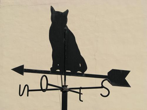 Weather vane... cat!