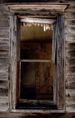 peering inside the abandoned