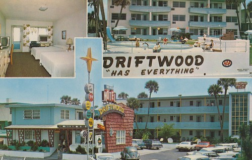 beach vintage florida postcard superior motel driftwood palmtree roomview aaa ormondbeach poolview awesomesign triview