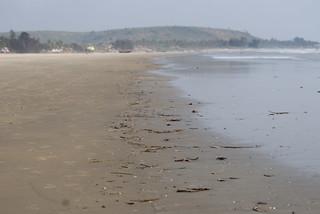 The tide line, Mandrem beach, Goa, India | by Paul Mannix