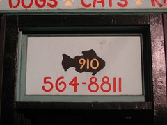 area code = fish | by samizdat co