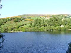 Bohernabreena Reservoir (video)